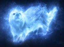 Hermione Otter Patronus
