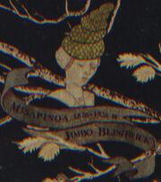 Misapinoa Black