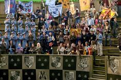 Audiences of the Triwizard Tournament's Third Task