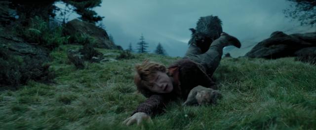 File:Sirius Black Attacking Ron.png
