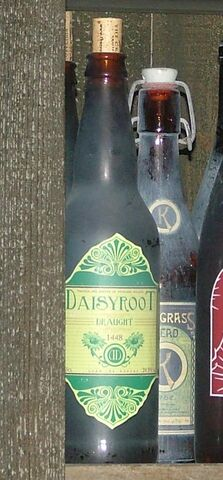 File:Daisyroot Draught.jpg