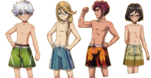 ToD Bachelors Swimsuits