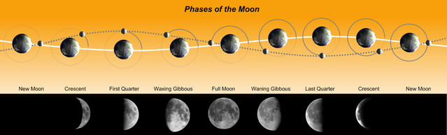 Plik:Phases of the Moon.png