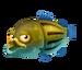Yellow Bass