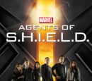 Agents of S.H.I.E.L.D./Season 1
