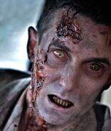 Walking Dead (TV Series) 006