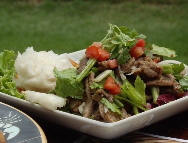 File:Thai Beef Salad Crop.jpg