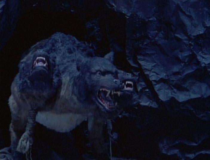 Headed Dog Horror Movies