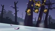 Owls 50