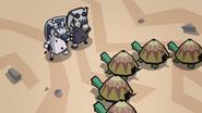 Big Baby Turtles 178