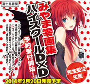High school dxd art book