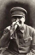 Silly Stalin