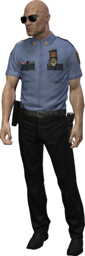 Court Security Guard outfit