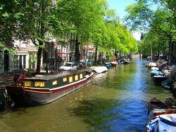 Sunshine from Amsterdam