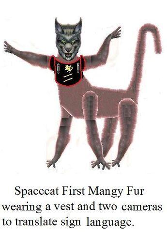 File:Spacecat First Mange in Vest..jpg
