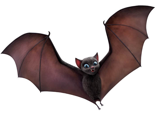 Casino bats