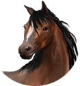 PferdeButton.png