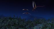 Edgewing fleeing