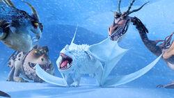 Snow wraith gallery 2