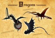 Wild skies three ne dragons1