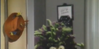 Envy (Muppet Show)