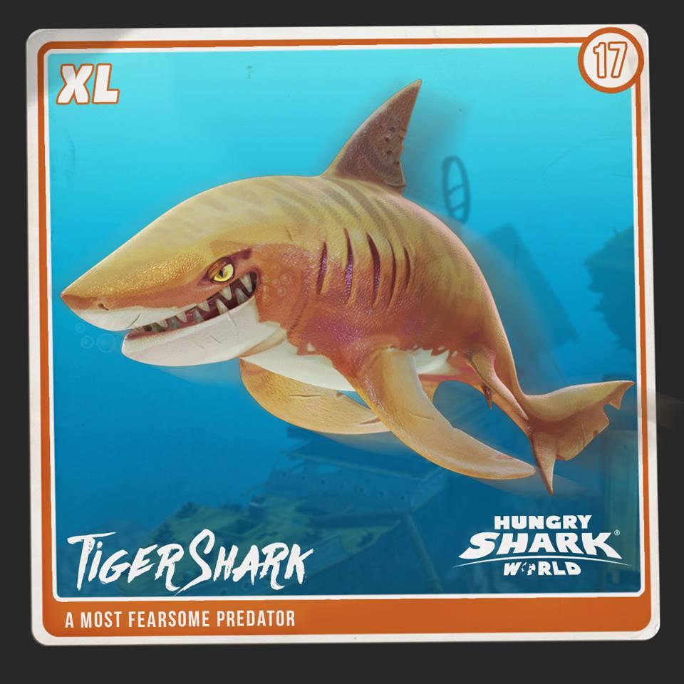Tiger Shark Hungry Shark World Hungry Shark Wiki