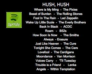 Spotify-hushhush