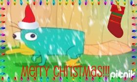 File:Sparklyplatypus's gift.jpg