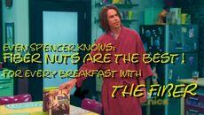 Fiber nuts2