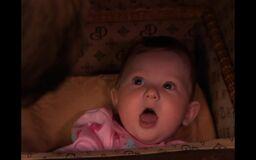 Baby Stephanie