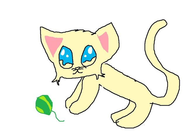File:Chizzycat.jpg