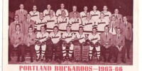 1965-66 WHL (minor pro) Season