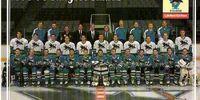 1995–96 San Jose Sharks season