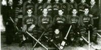 1933-34 AHA season