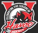 2008-09 Huntsville Havoc Season