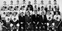 1958–59 Chicago Black Hawks season