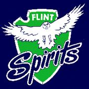 Flint Spirits (IHL) 88-89 logo