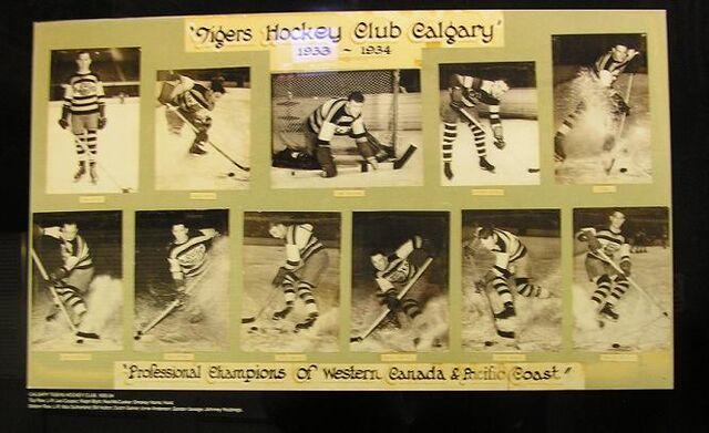 File:CalgaryTigersPicture.jpg