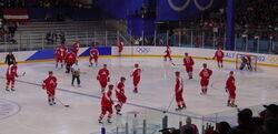 Austriaicehockey2002