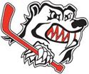 File:Penrith Bears logo.png