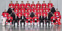 2011–12 HockeyAllsvenskan season