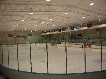 Uconn arena