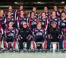 2012-13 QJAAAHL Season