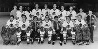 1983–84 BHL season