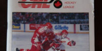 1993 World Junior Ice Hockey Championships