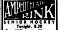 1935-36 Manitoba-Thunder Bay Senior Hockey League Season