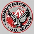 Adirondack Jr Wings Logo