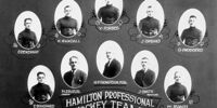 1923–24 Hamilton Tigers season