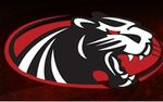 Western Valley Panthers logo
