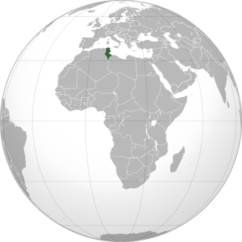 File:550px-Tunisia (orthographic projection) svg.png